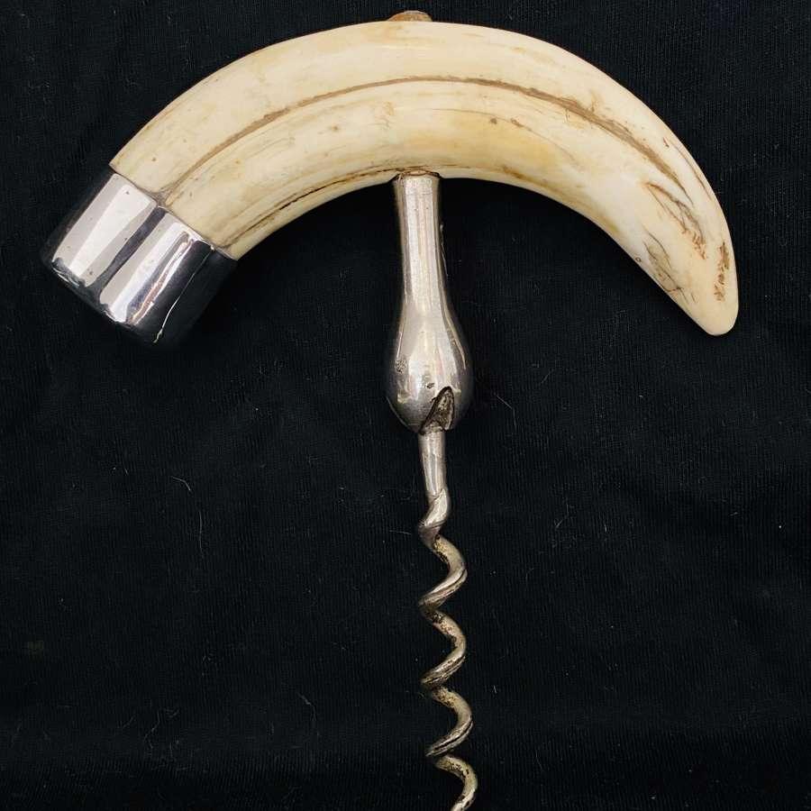 Walrus Tooth Corkscrew