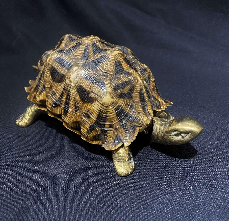 Tortoise Desk Bell
